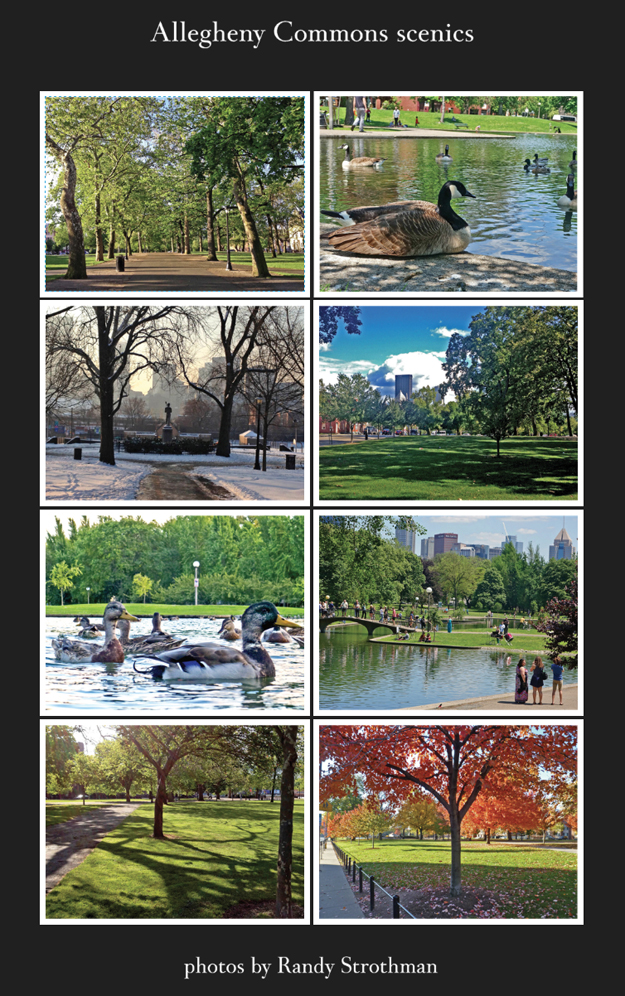 Vistaprint marketing poster for Allegheny Commons