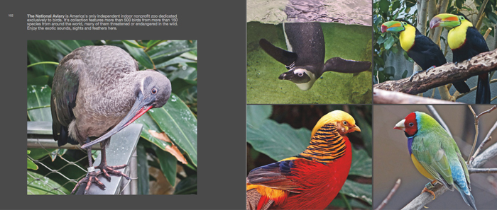 Colors of Pittsburgh photo book, national aviary