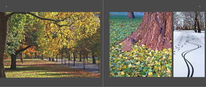 Colors of Pittsburgh photo book, Allegheny Commons